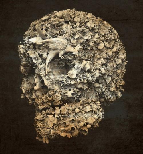 skull-550x593